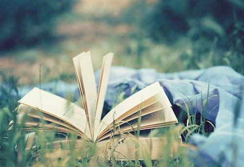Leer en el campo