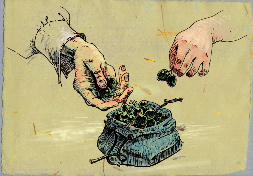 Lazarillo de Tormes: Racimo de uvas Ilustrador: Antonio Ortega Moreno. Banco de imágenes Intef.